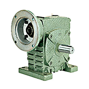 Casting worm gear reducer